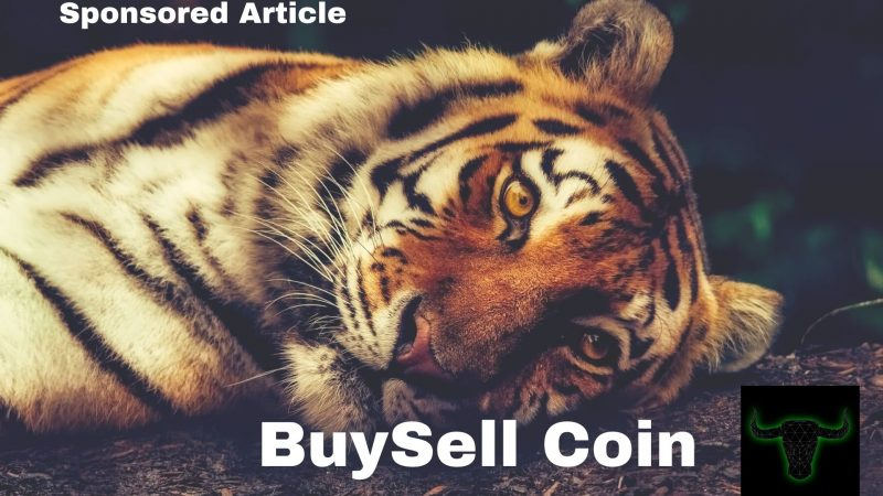 BuySell Coin Project is Prioritizing Wild Animals Welfare and Conservancy, BULL Coin Trading at $6.24