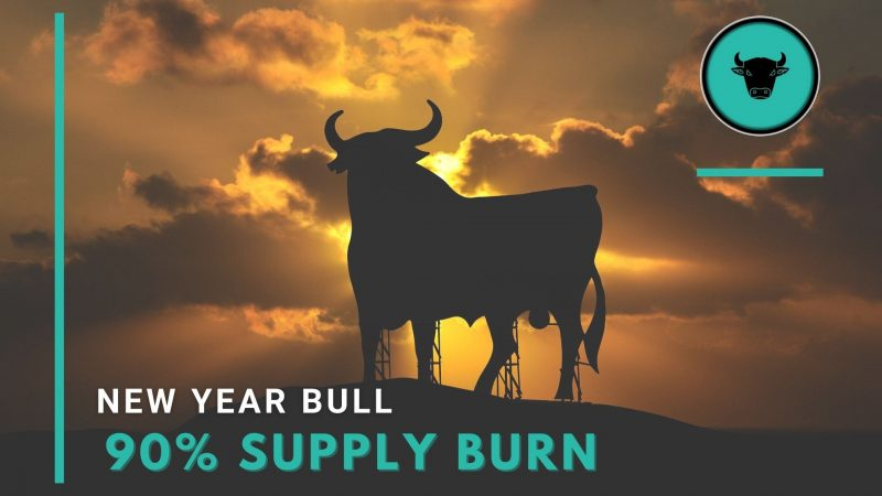 New Year Bull: Bringing More Value to Users With 90% Supply Burn