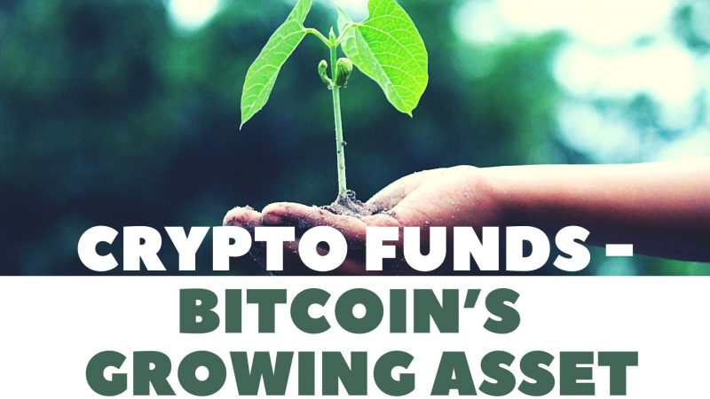 Old Business Gets a New [Inter]Face: Crypto Funds are Bitcoin's Greatest Growing Asset